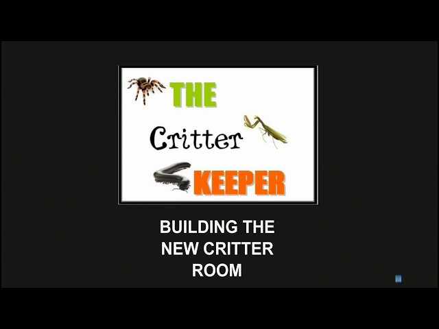 Building The New Critter Room