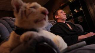 Тигр смотрит порно