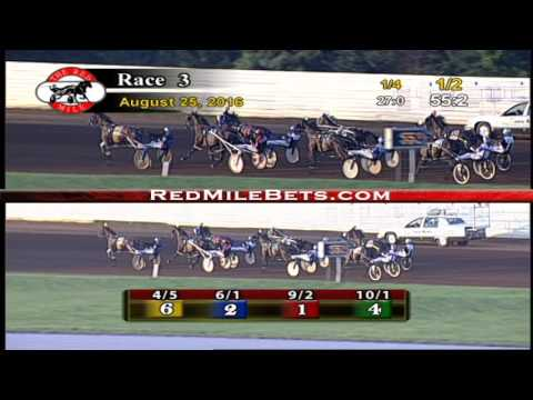 Red Mile Racetrack Race 3 8-25-2016