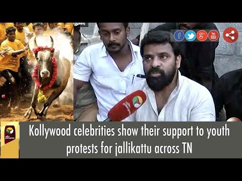 Kollywood celebrities show their support to youth protests for jallikattu across TN