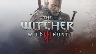The Witcher 3 Wild Hunt #8