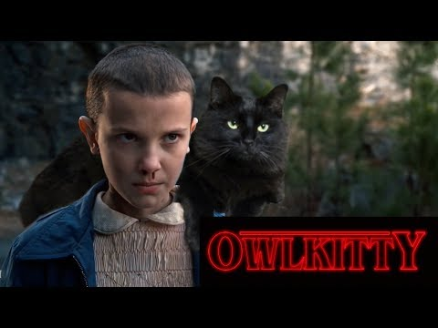 Stranger Things - with a Cat