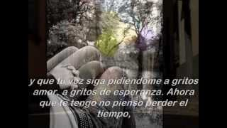Alex Ubago - A Gritos De Esperanza with lyrics