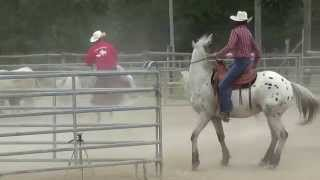 WESTERN 2015-05-23 CHEZ EQUIDEAL