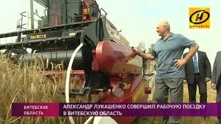 Александр Лукашенко: Витебскую область необходимо привести в порядок