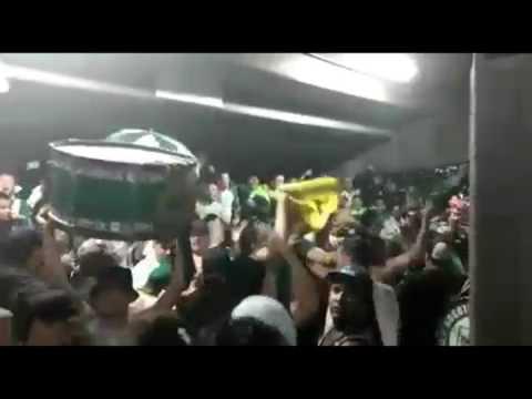 Atletico Nacional 1 vs millonarios 0, Semifinal Liga Aguila, Canticos Los Del Sur