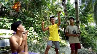 vlog 3 under the coconut tree we stay