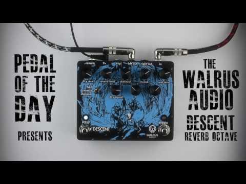 Walrus Audio Descent Reverb Octave Machine Guitar Effects Pedal Demo Video
