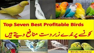 Top 7 best profitable birds, konse parindy zabardast profit dety hein 2017/18 urdu हिन्दी