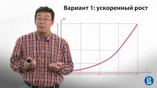 4.2 Производственная деятельность фирмы