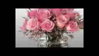 Qari Muhammed Ali Falahi   Shaadi thumbnail