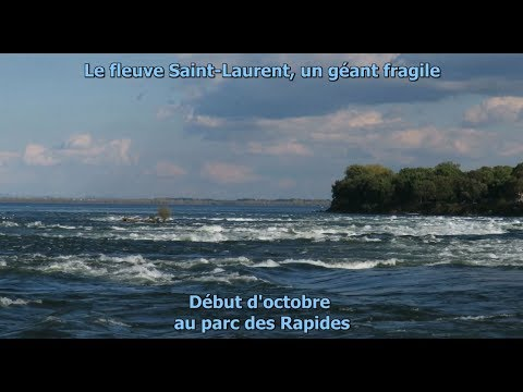 Vidéo: Début d'octobre au parc des rapides