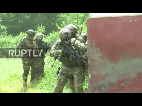 Bulgaria: Greece-Bulgaria Special Forces participate in joint drills 'Balkan Dagger'