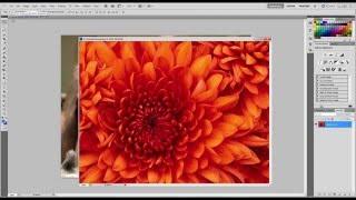 1 урок - Изучаем Photoshop за 7 дней