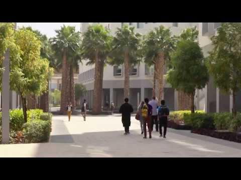 Meet NYU Abu Dhabi