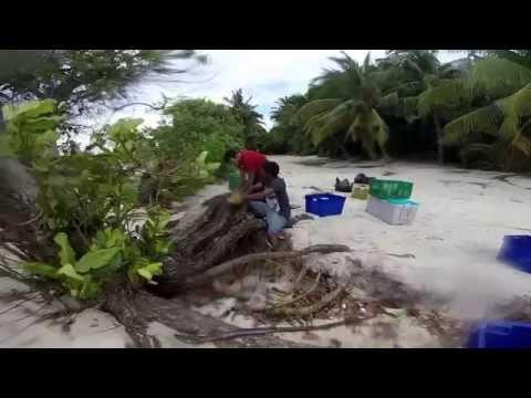 Dharavandhoo Clean Up: CSR