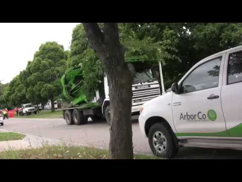Download Tree replace with ArborCo Melbournem4v