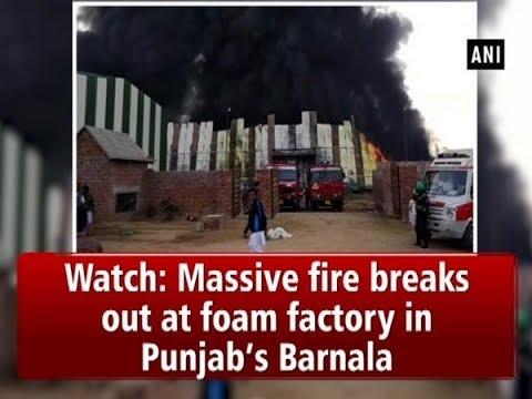 Watch: Massive fire breaks out at foam factory in Punjab's Barnala