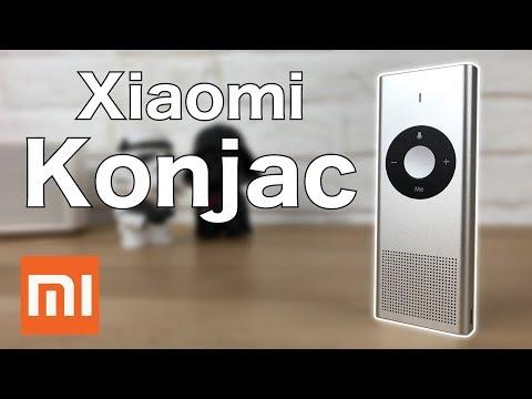 🇬🇧 Traductor XIAOMI KONJAC - Review   JMramirez