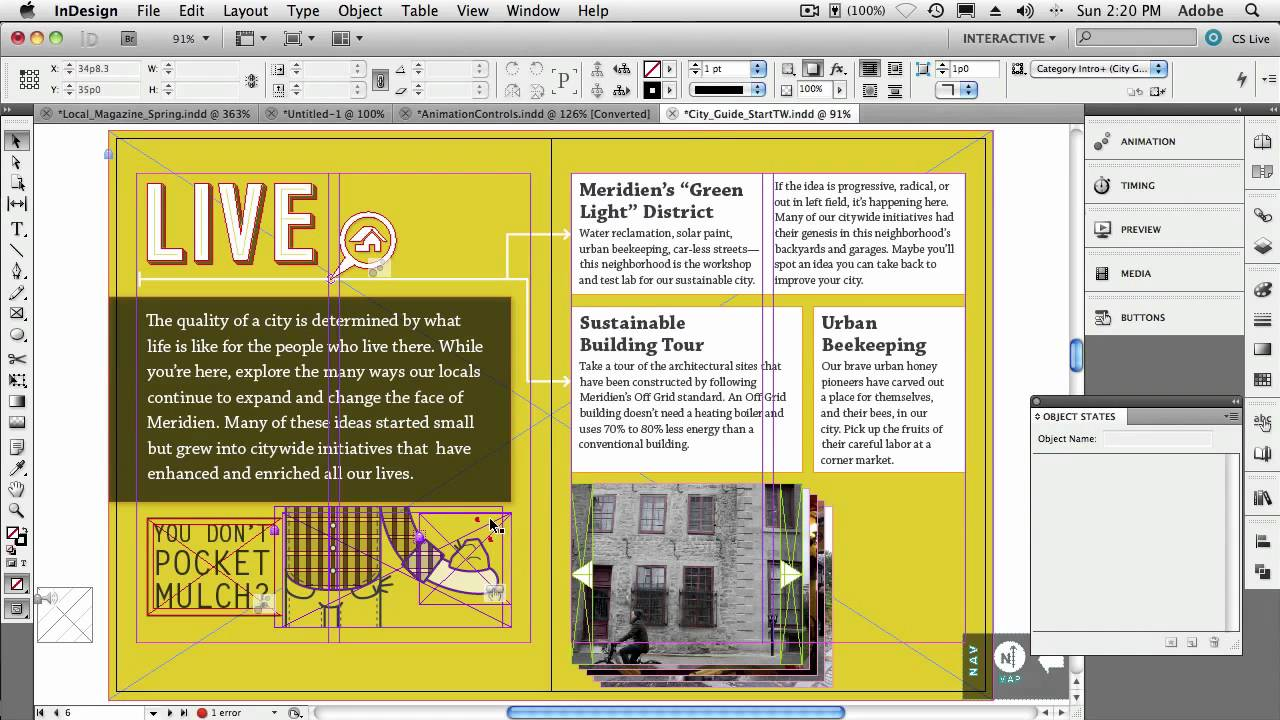 A trial of indesign cs5