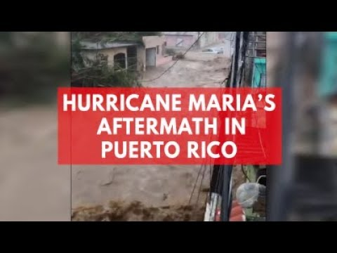 Puerto Rican Cop Reveals The Truth About The Ongoing Humanitarian Crisis From Hurricane Maria