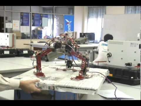 Projek Sarjana Muda Kejuruteraan (Elektrik - Mekatronik), Universiti Teknologi Malaysia, 2008-2009