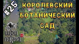 видео Королевский ботанический сад