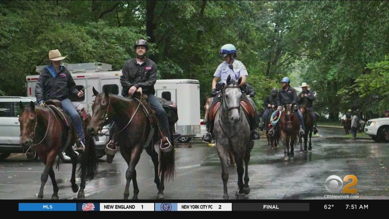 Bravehearts' Trail To Zero Program Riding To Rescue Of U S  Veterans In  Crisis