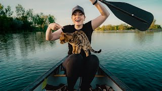 HOW TO TRAIN AN ADVENTURE KITTY || WILL a BENGAL CAT like a CANOE?!!
