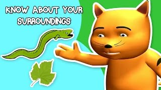 Science Questions For Kids   Know About Your Surrounding   Interesting Facts About Nature