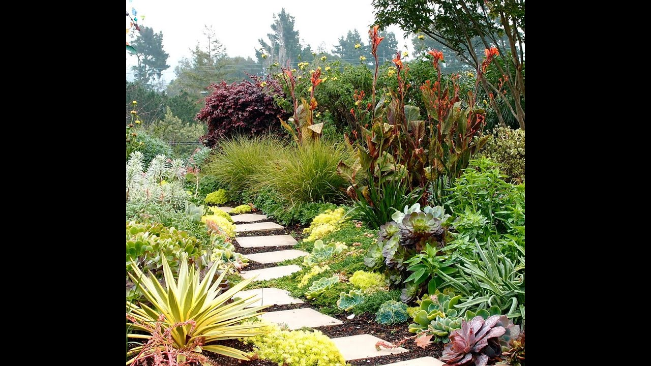 landscaping with grasses ideas