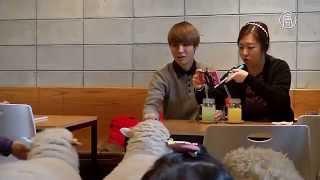 Погладить овцу можно в кафе в Сеуле (новости)