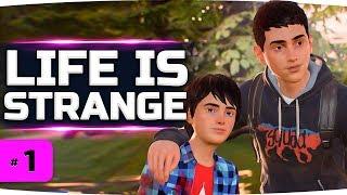 ЭТА ДРАМА ЗАСТАВИТ ВАС ПЛАКАТЬ ● Life is Strange 2