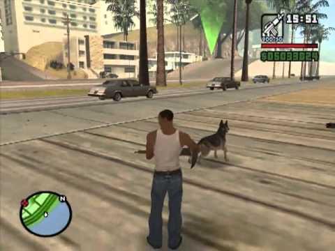 GTA San Andreas Retarded Dog?