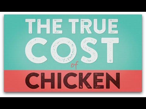 The True Cost of Chicken