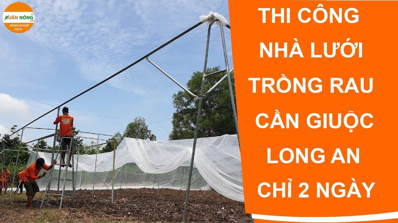 Nhà lưới | Thi công nhà lưới trồng rau tại Cần Giuộc Long An