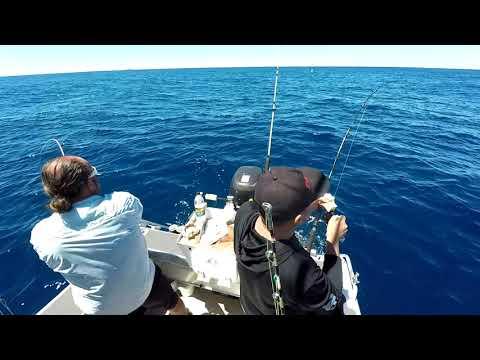 Fishing Sydney Fads
