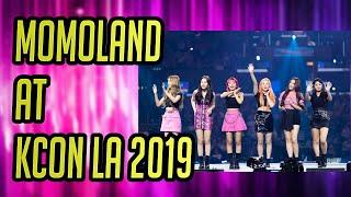 KCON LA 2019 - MOMOLAND at KCON LA