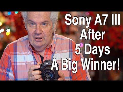 Sony A7 III After 5 Days - A Big Winner!!