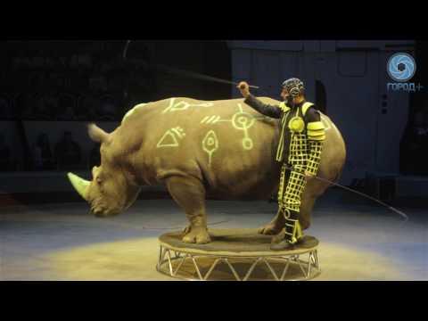 В Цирке Чинизелли представили новую программу ЦиркUS 2.0