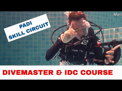 PADI Skill Circuit for the Divemaster or IDC Course