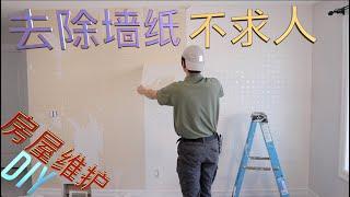 自己动手壁纸清除+油漆, 加拿大房屋维护,埃德蒙顿华语装修频道,和你分享室内维修u0026维护