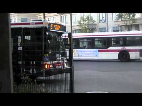 Summer Buses-2007 TTC Orion VII Diesel Video  collections