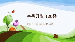 표준수목 120종 수목감별1