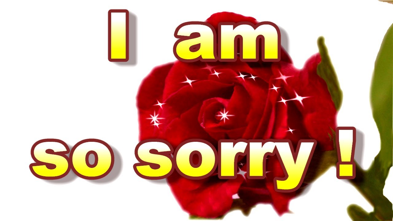 Card For Sorry Sorry Card I Am Sorry Greeting Card Youtube