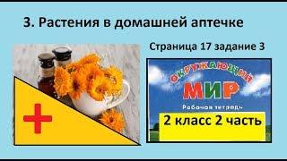 Лекарства дома/Растения в домашней аптечке №3 (Окр.мир 2 класс Перспектива)