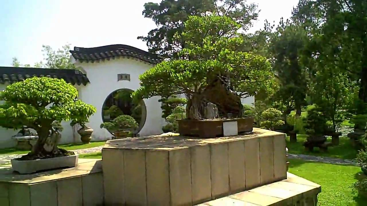 Singapore Video Chinese Garden Bonsai Garden   YouTube