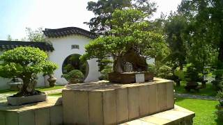 Singapore video Chinese Garden Bonsai Garden