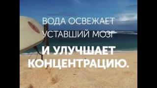 видео Надо жить у моря, мама. Самое дешевое жилье на побережьях России