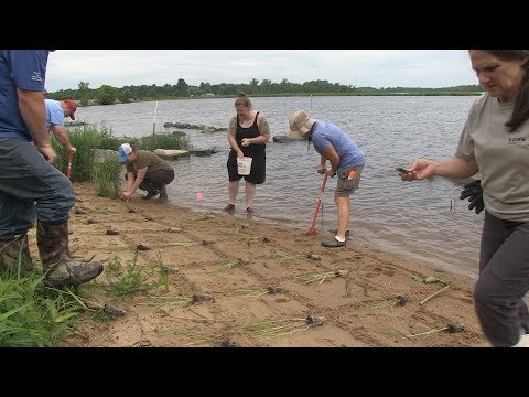 Artifacts and shoreline: Preserving the Pamunkey Reservation